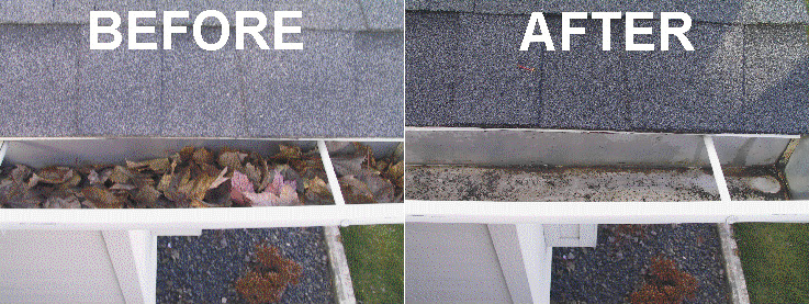 Domestic Gutter Cleaning Services Sussex
